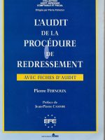 L'AUDIT DE LA PROCEDURE DE REDRESSEMENT